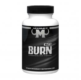 Best Body MAMMUT Fat Burn CSC - 90 caps